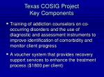 texas cosig project key components