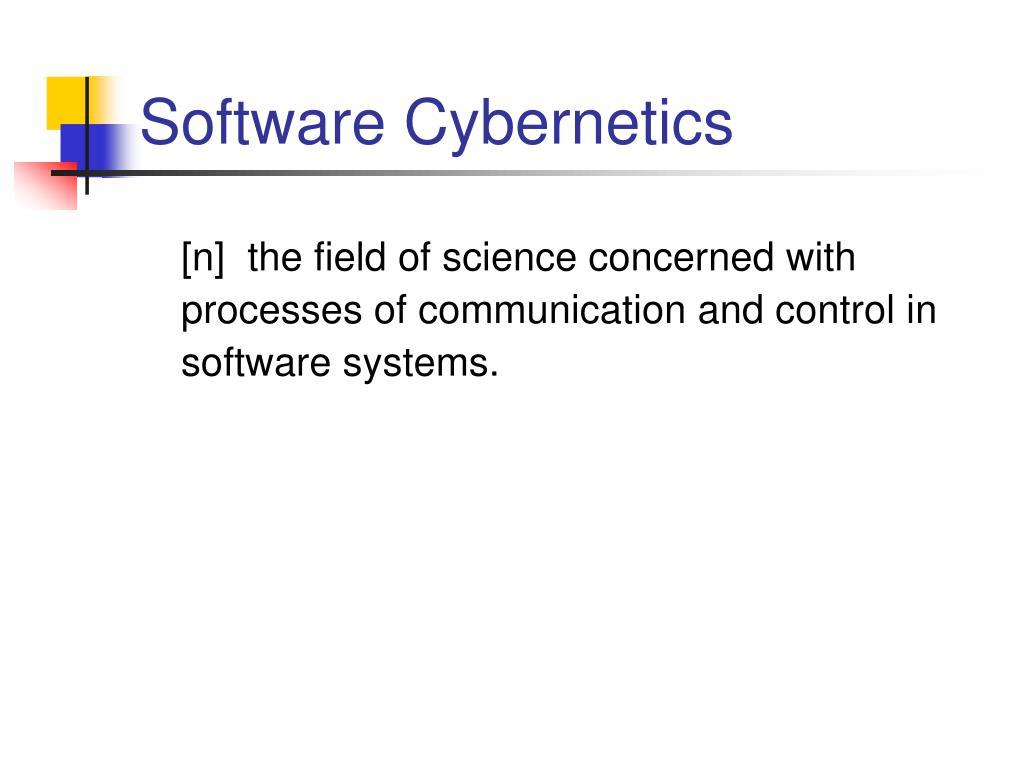 Software Cybernetics