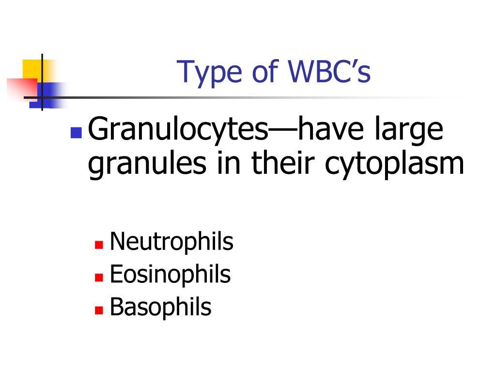 Type of WBC's