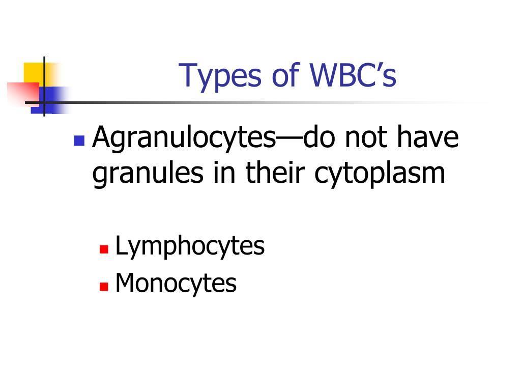 Types of WBC's