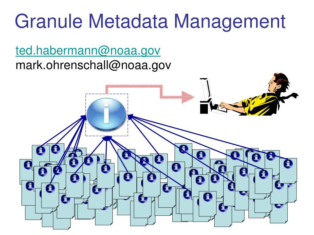 granule metadata management l.