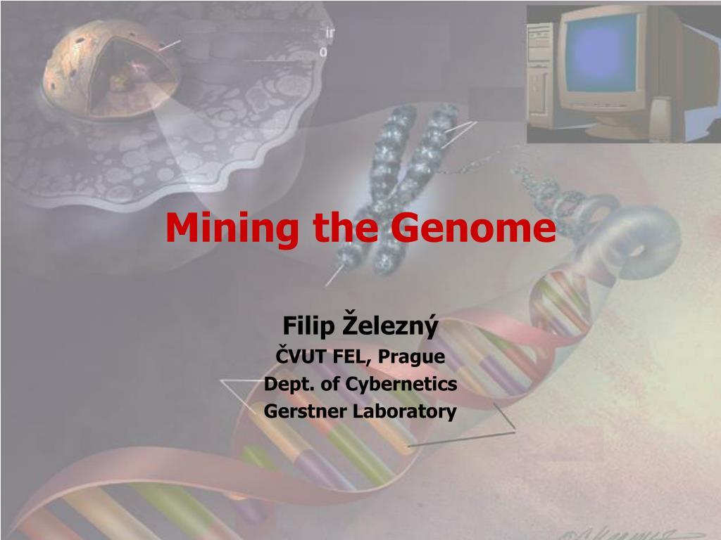 mining the genome l.