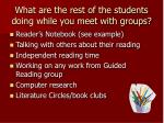 what are the rest of the students doing while you meet with groups