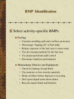 bmp identification26