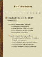 bmp identification28