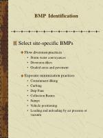 bmp identification31
