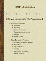 bmp identification32