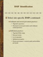 bmp identification33