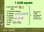 1 aum equals