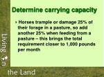 determine carrying capacity20