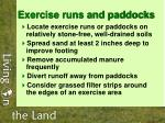exercise runs and paddocks