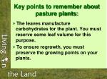 key points to remember about pasture plants