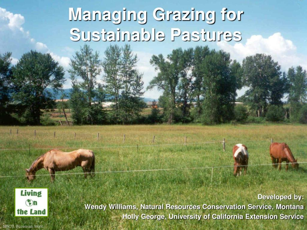 managing grazing for sustainable pastures l.