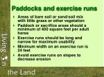 paddocks and exercise runs