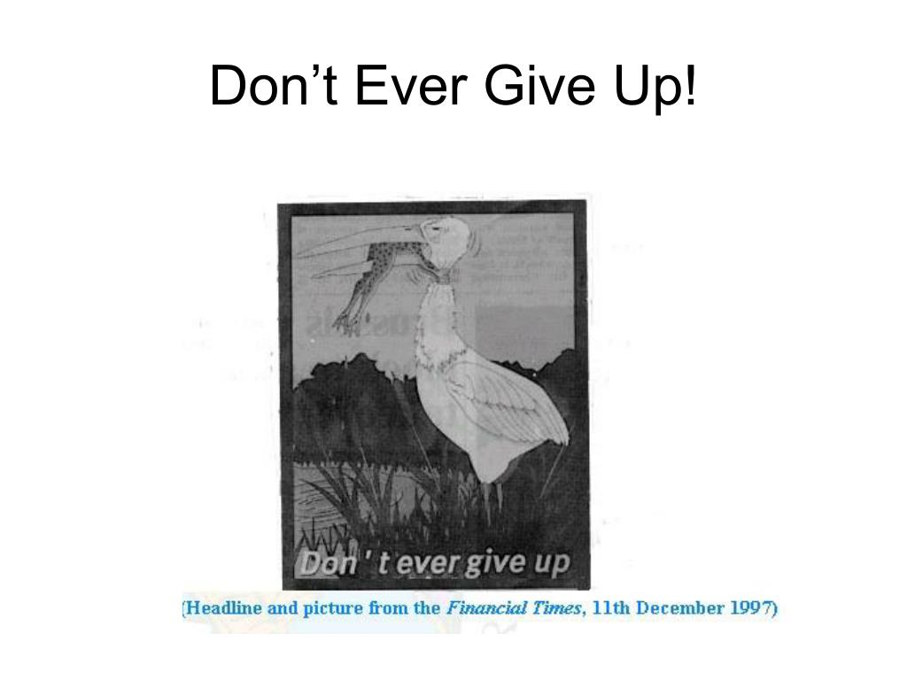don t ever give up l.