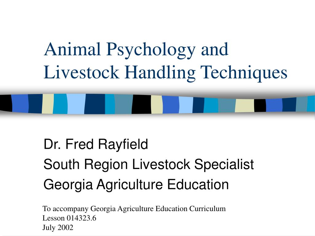 animal psychology and livestock handling techniques l.