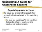 organizing a guide for grassroots leaders19