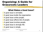 organizing a guide for grassroots leaders21
