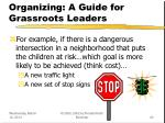 organizing a guide for grassroots leaders23