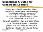 organizing a guide for grassroots leaders29