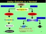 stellar evolution in a nutshell