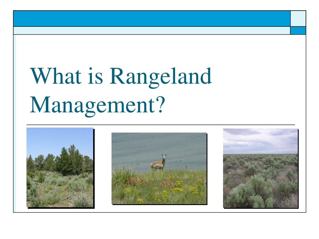 what is rangeland management l.