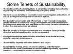 some tenets of sustainability