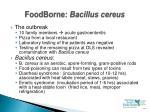 foodborne bacillus cereus