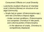 consumers effects on local diversity