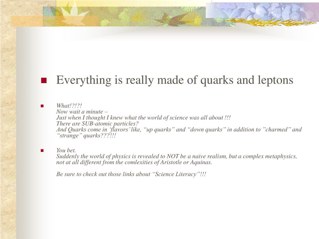 Everything is really made of quarks and leptons