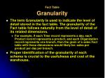 fact table granularity