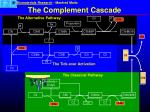 the complement cascade16