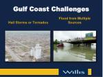 gulf coast challenges