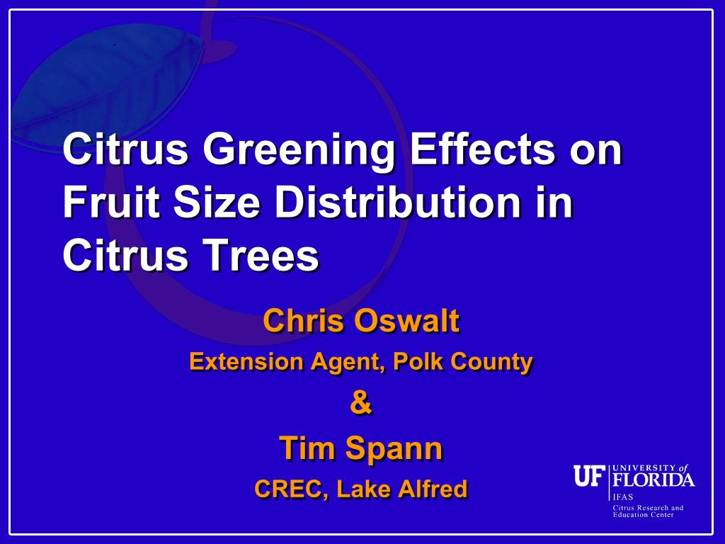 citrus greening effects on fruit size distribution in citrus trees l.