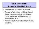 the skeleton blum s medial axis