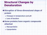 structural changes by denaturation