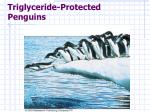 triglyceride protected penguins