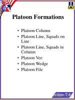 platoon formations