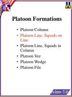 platoon formations17