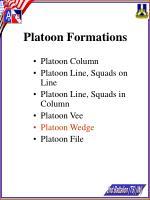 platoon formations23