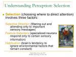 understanding perception selection