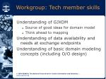 workgroup tech member skills