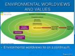 environmental worldviews and values5