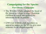 campaigning for the species past efforts campaigns