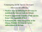 campaigning for the species strategies advocacy lobbying