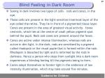 blind feeling in dark room