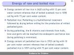 energy of raw and boiled rice
