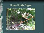 honey suckle popper