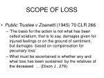 scope of loss