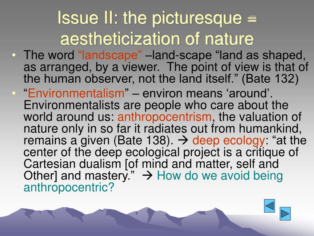 Issue II: the picturesque = aestheticization of nature